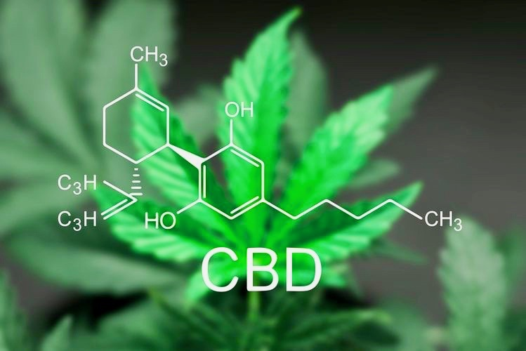 CBD Oil - A sheet of cannabis marijuana in the defocus with the image of the formula CBD